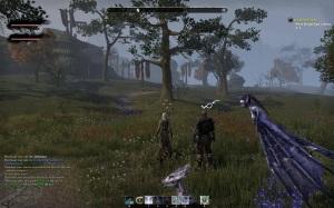 Elder Scrolls Online Flax High Graphics