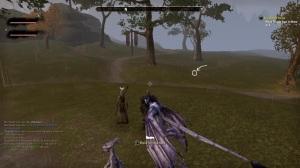 Elder Scrolls Online Low Graphics