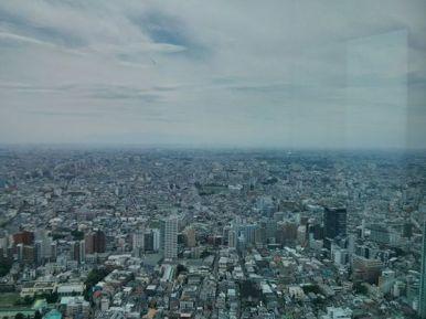 Tokyo Metropolitan Building Skyline